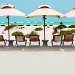 Hala Abu Dhabi proveedora de excursiones exclusivas para Sir Bani Yas Island Beach y Oasis